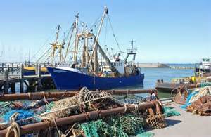 fishing-industry