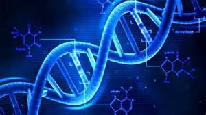 reversing aging in DNA